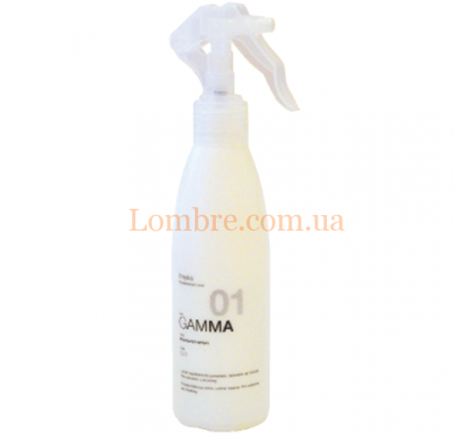 Erayba G 01 Equalizer Spray - Спрей для выравнивания структуры волос