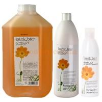 FarmaVita Back Bar Apricot Shampoo - Абрикосовый шампунь для сухих волос